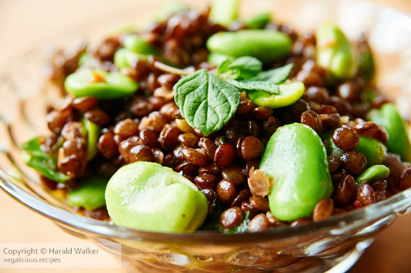 Warm Fava Bean and Lentil Salad with Mint