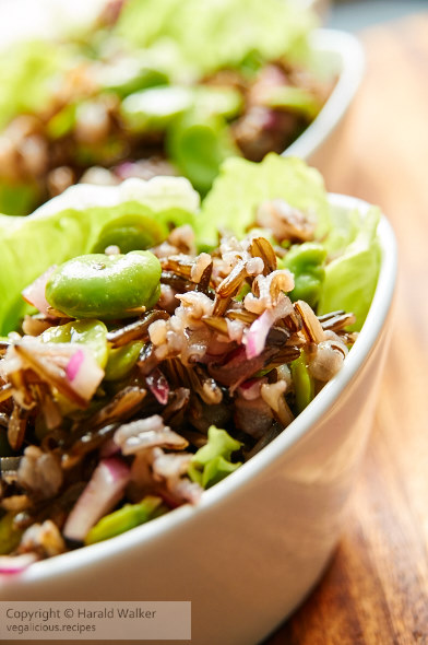 Wild Rice and Fava Bean Salad