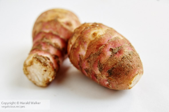 Jerusalem artichokes (Helianthus tuberosus) tubers