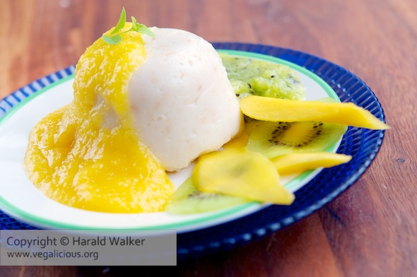 Coconut Pudding with Mango and Kiwi Purees
