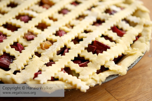 Rhubarb Raisin Pie