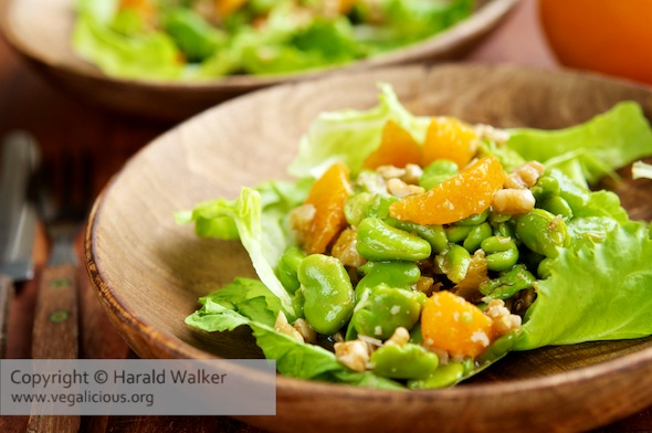 Fava Bean, Walnut and Orange Salad