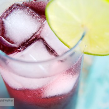 Healthy Elderberry Spritzer