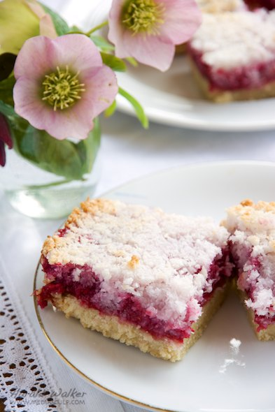 Coconut Raspberry Bars