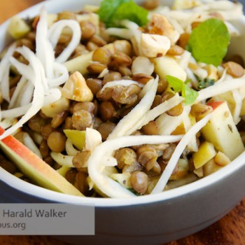 Warm Lentil Salad with Celery Root, Apples and Hazelnuts