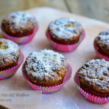 Banana Crumb Muffins w/ Fresh Pineapple & Coconut
