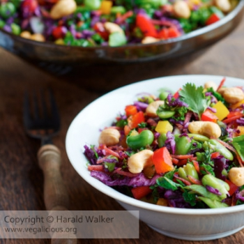 Asian slaw salad